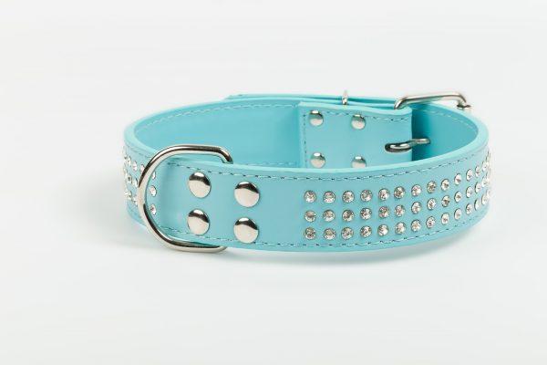 Brighton Leather Dog Collar - Aqua Blue