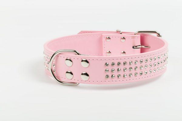 Brighton Leather Dog Collar - Baby Pink