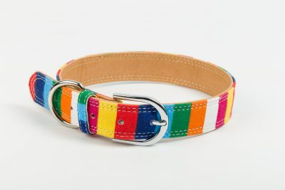 Camden Designer Dog Collar