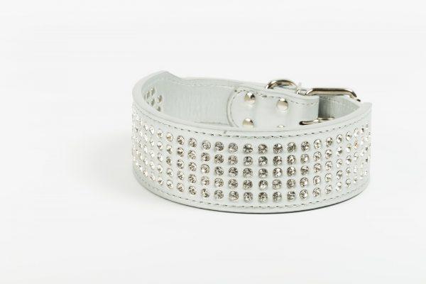 Vegas Dog Collar