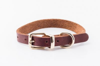 Portreath Dog Collar