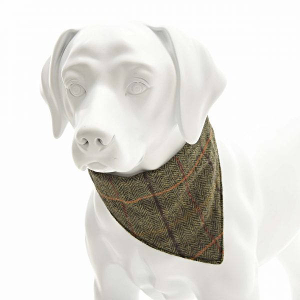 Iwoof Green style 1 Herringbone Tweed Neckerchief Collar