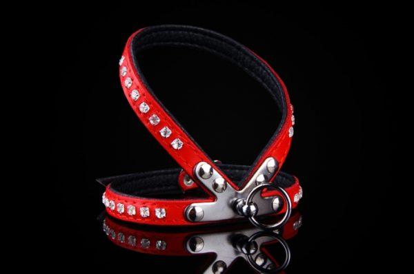 bodmin harness red/black