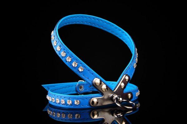 bodmin harness blue