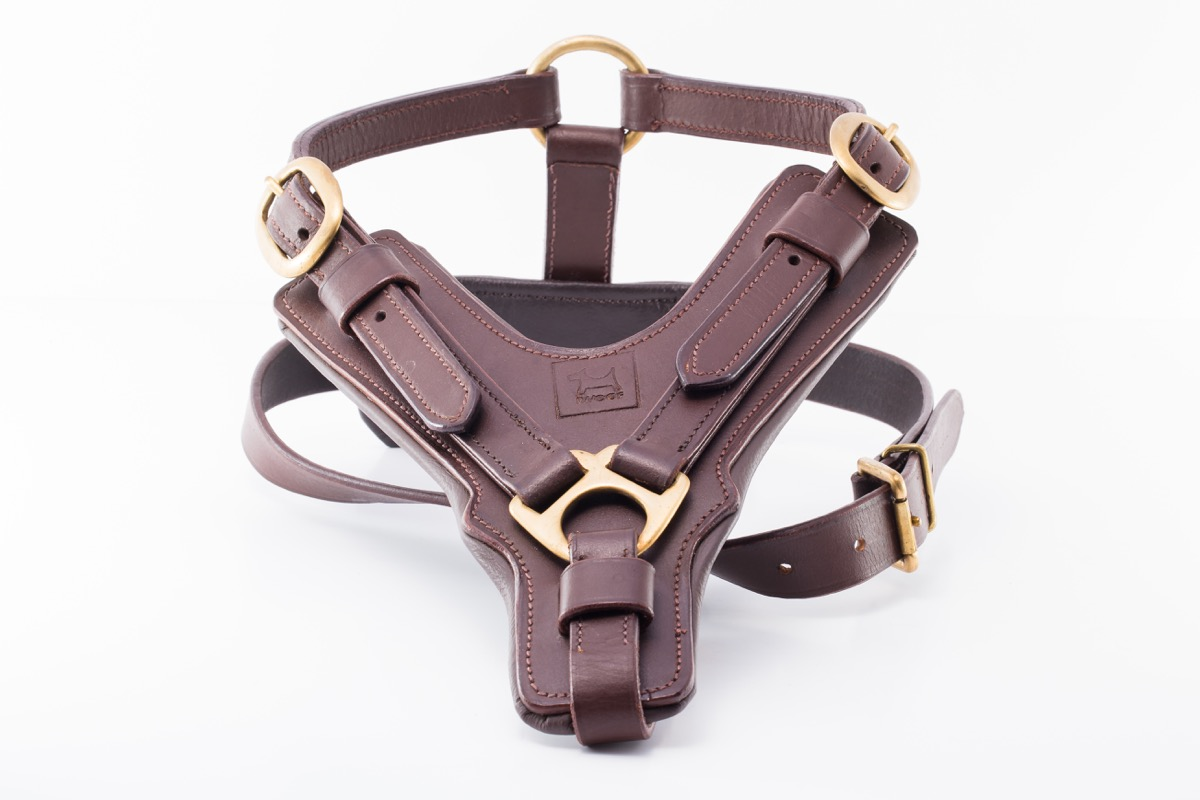 Portobello Leather Dog Harness By Iwoof Com U2122 In Designer