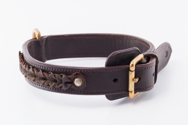 Polzeath designer dog collar
