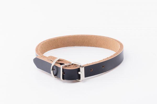 Morwenna designer dog collar