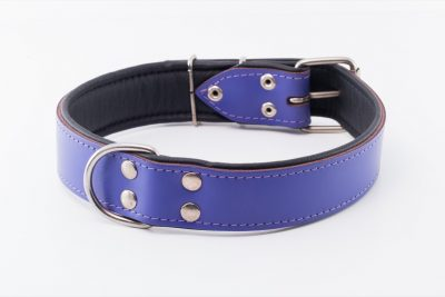 Waterloo designer leather dog Collar