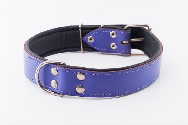Waterloo designer leather dog Collar