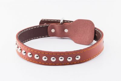 kynance designer leather dog collar