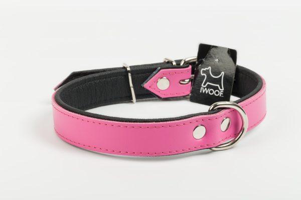 Waterloo Collar Pink