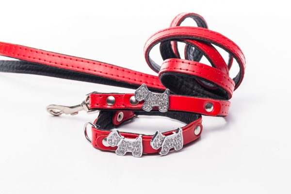 iwoof_designer_dog_accesories_collars_leads_toys_beds_luxury_posh_leather_fabric_tags_charms_treats_puppy_puppies_trends_fashion_bowls-0155