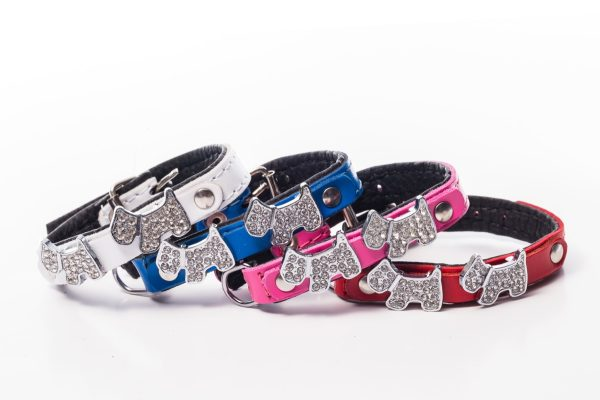 Highland Designer Dog Collar