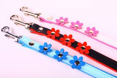 Flower Power Dog Lead
