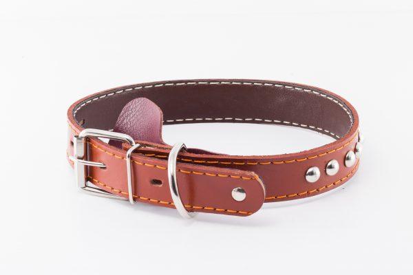 Kynance leather designer dog collar by IWOOF