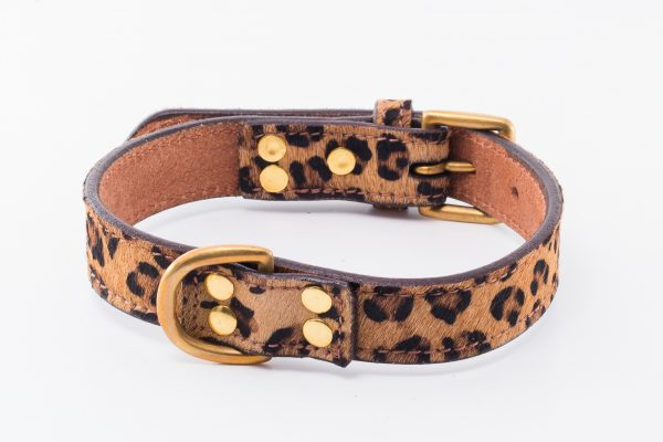 Cheetah designer leather dog collar by IWOOF