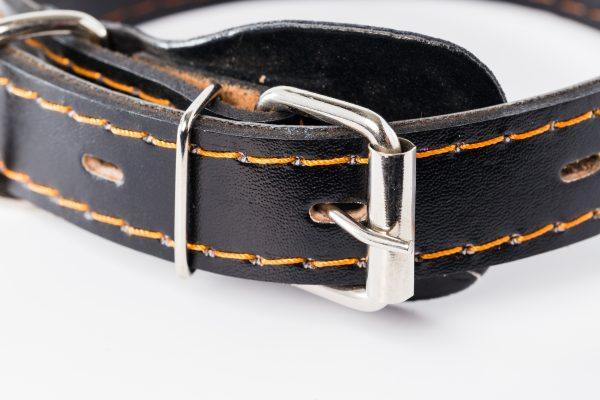 Kynance designer dog collar in leather by IWOOF