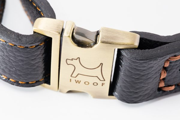 Royal Designer dog collar by IWOOF