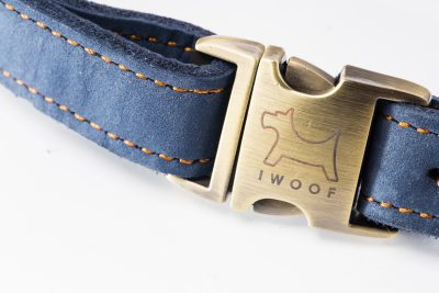 Royal Designer Dog Collar
