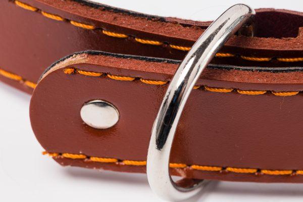 Kynance designer leather dog collar by IWOOF