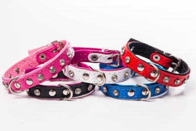Mini designer leather dog collar