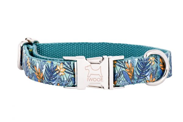 Moorland designer dog collar by IWOOF