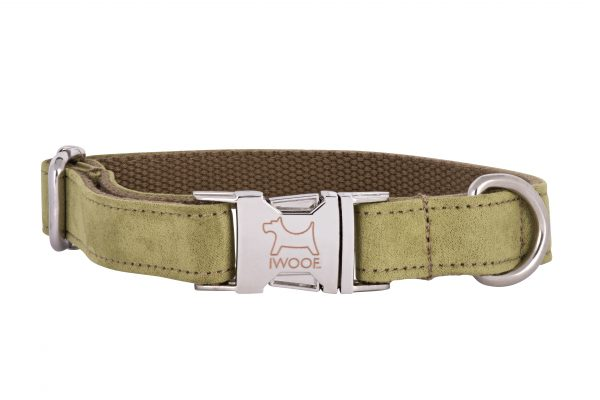 Woodpecker designer dog collar and matching designer dog lead by IWOOF