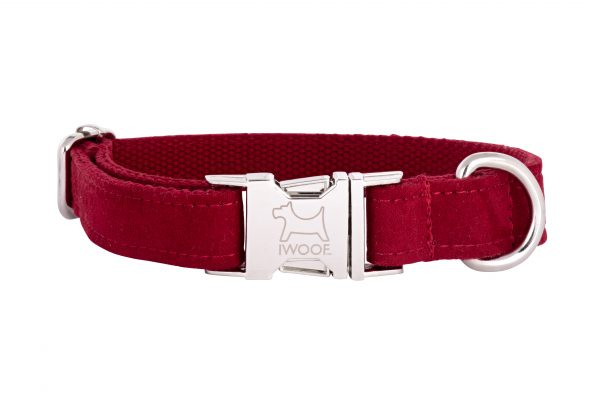 Designer dog collar and designer dog lead in Plum
