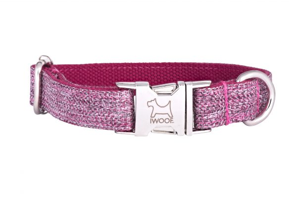 Dog Rose designer dog collar and lead set with silver buckle by IWOOF