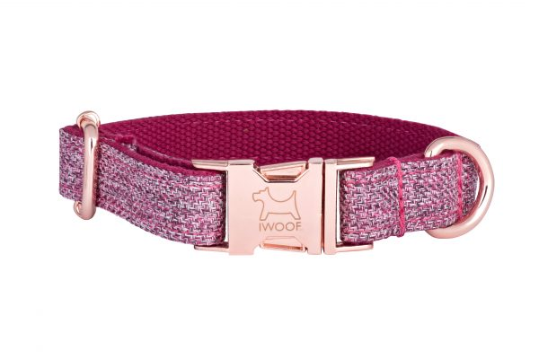 Dog Rose designer dog collar and dog lead with Rose Gold buckle by IWOOF