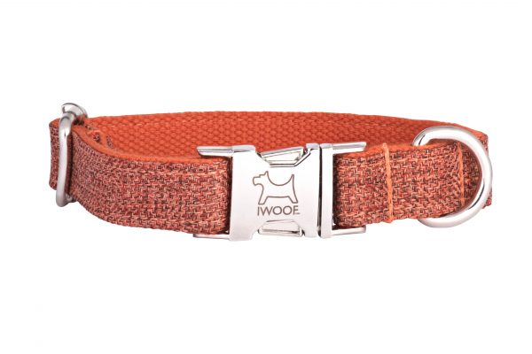 Sun Rise designer dog collar and matching designer dog lead by IWOOF