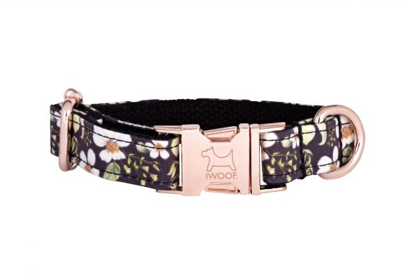 Cadgwith designer dog collar and matching dog lead with Rose Gold buckle