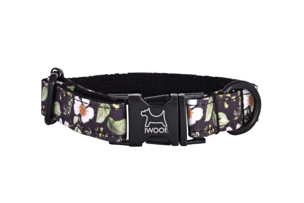 Cadgwith designer dog collar with black buckle