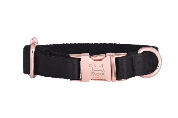 Black on Gold designer dog collar and matching designer dog lead by IWOOF