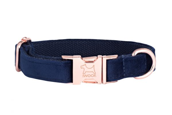 Blue designer dog collar and matching designer dog lead by IWOOF