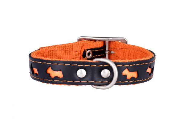 Reflex reflective designer dog collar and matching designer dog lead by IWOOF