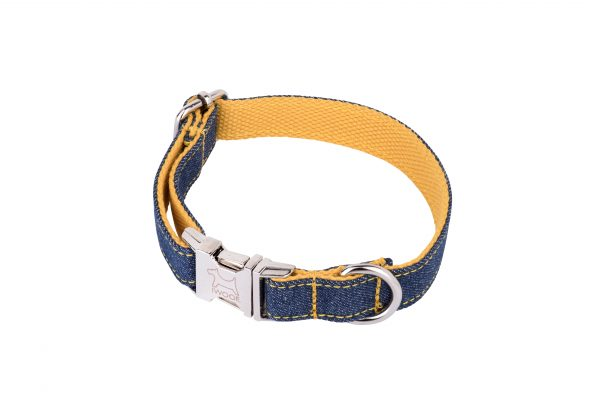 Surfer designer dog collar and dog lead by IWOOF