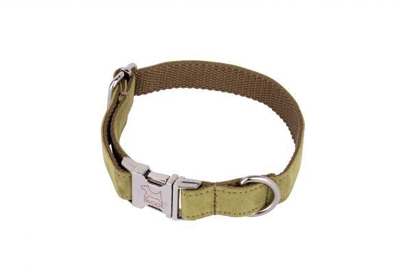 Woodpecker designer dog lead and matching designer dog lead by IWOOF