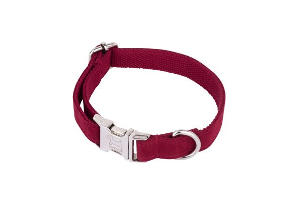 Designer dog collar in Plum by IWOOF