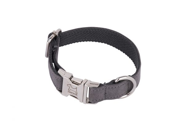 Dolphin designer dog collar and dog lead set by IWOOF