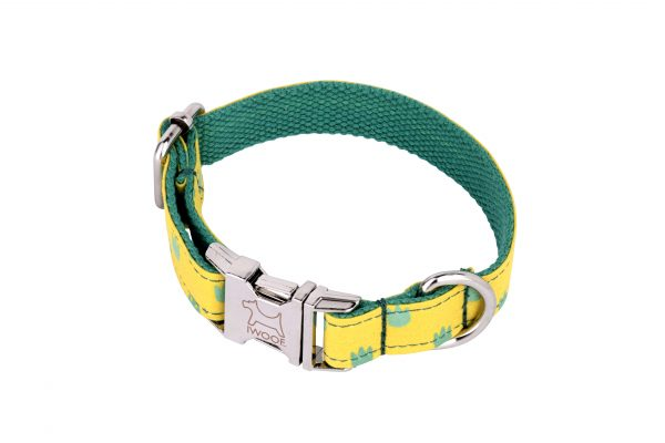Desert designer dog collar and matching designer dog lead by IWOOF