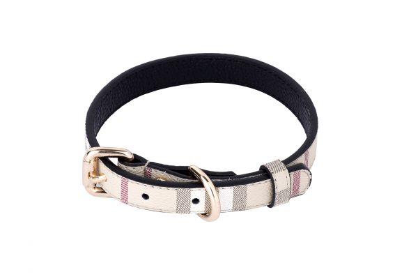 Carnaby designer dog collar by IWOOF