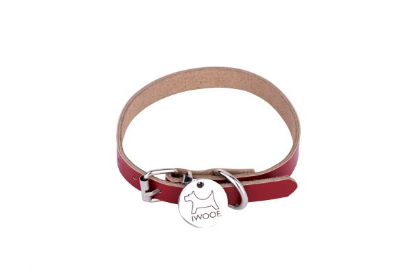 Morwenna designer dog collar and dog lead in red by IWOOF