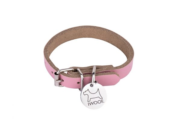 Morwenna designer dog collar and dog lead by IWOOF
