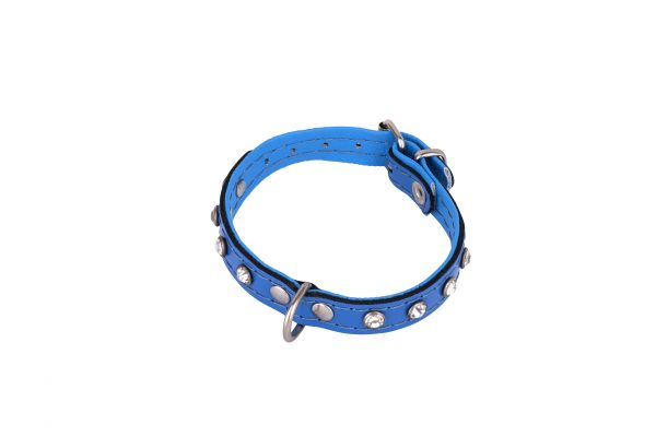 Mini Blue leather designer dog collar and matching dog lead by IWOOF
