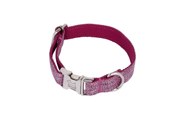 Dog Rose designer dog collar and dog lead set with silver buckle by IWOOF