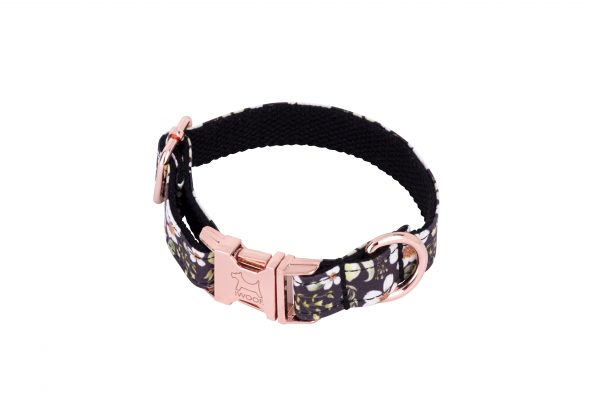 Cadgwith designer dog collar and dog lead with Rose Gold buckle