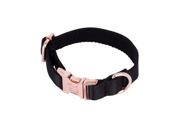 Black on Gold designer dog collar and matching designer dog lead by IWOOF