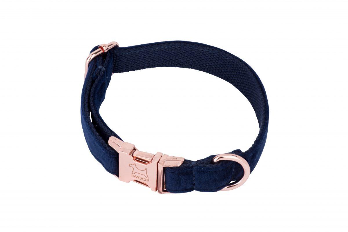Blue designer dog collar and matching designer dog lead by IWOOF