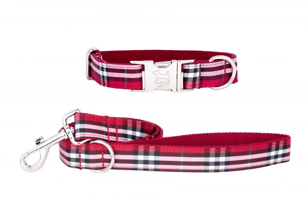 Tomato designer dog collar and matching dog lead by IWOOF